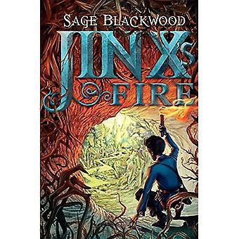 Jinx van brand
