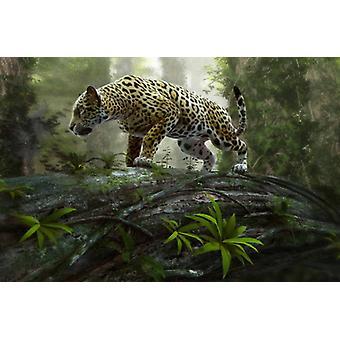 Fond d'écran Mural Jaguar sur le Rôdre