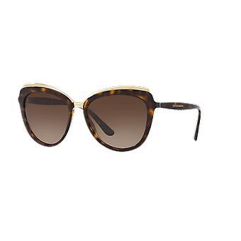 Dolce&Gabbana DG4304 502/13 Havana/Brown Gradient Sunglasses