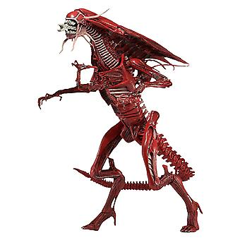 Aliens folkmord Red Queen Deluxe Action Figur