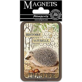 Stamperia Hedgehog 8x5.5cm Magnet