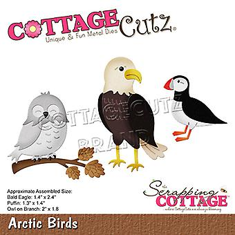 Romutusmökki Arktiset linnut