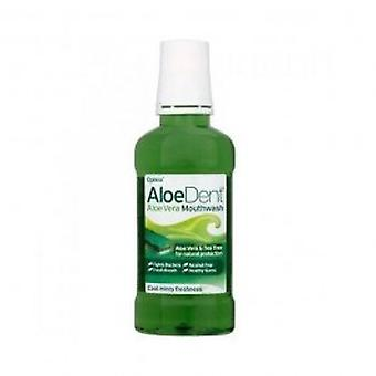 Dente do aloés - Aloe Vera colutório 250ml