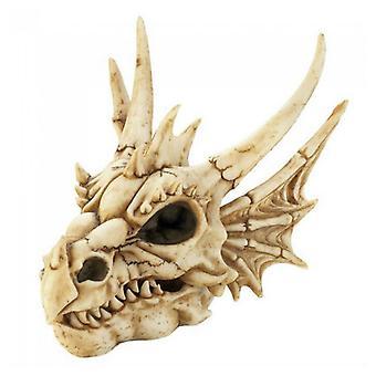 Dragon Crest Dragon Skull Trinket Box Figurine, 1er Pack