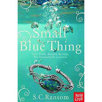 Kleine blauwe ding door S. C. Ransom - 9780857630001 boek
