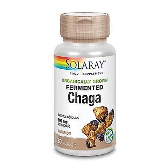 Solaray Organically Grown Fermented Chaga Mushroom Vcaps 60 (88131)