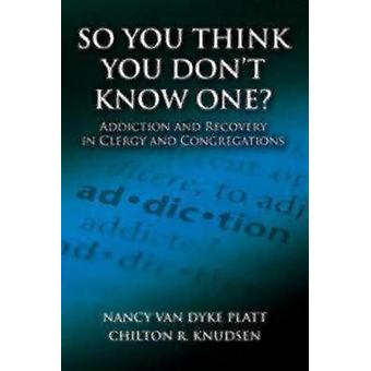 So You Think You Dont Know One Addiction and Recovery in Clergy and Congregations by Van Dyke Platt & Nancy