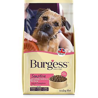 Chien adulte sensible Burgess - Saumon - 12.5kg