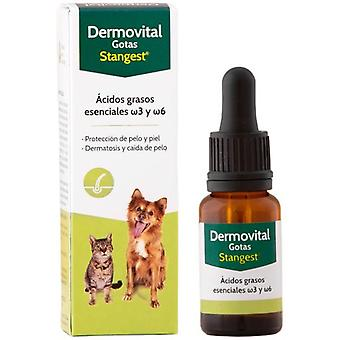 Stanvet Dermovital Drops (Dogs , Cats , Supplements , Supplements)