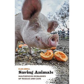Dieren redden Multispecies Ecologieën van Redding en Zorg