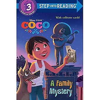 Coco Deluxe steg i behandlingen med Cardstock (Disney/Pixar Coco) (steg i behandlingen)