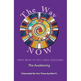 The Way NOW  Book One of the Lares Teachings by V. & Mari
