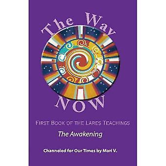 Die Art und Weise jetzt Buch von Lares Lehren von V. & Mari