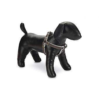 Designed By Lotte Virante Dog Harness