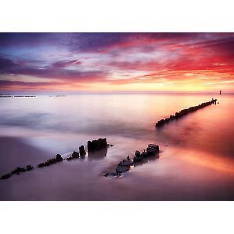 Tapet Mural Ocean Beach vid solnedgången