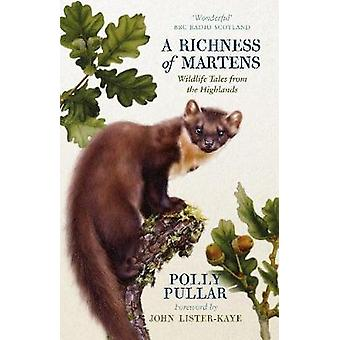 A Richness of Martens Wildlife Tales from Ardnamurchan Wildlife Tales from the Highlands