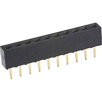 econ connect Receptacles (standard) No. of rows: 1 Pins per row: 10 FHS43S10G 1 pc(s)