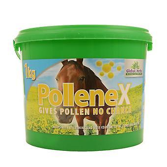 Herbes mondiales PolleneX
