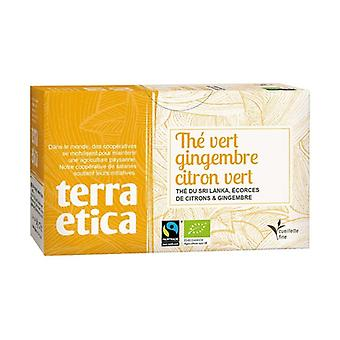 Ginger and lime green tea 20 infusion bags of 36g