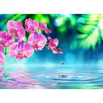Tapet väggmålning Zen orkidé och droppar
