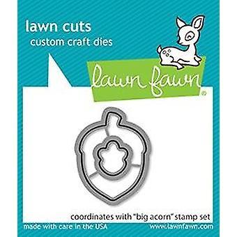 Lawn Fawn Big Acorn Dies