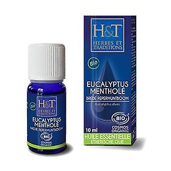 Organic mentholated eucalyptus essential oil 10 ml of essential oil