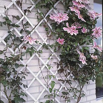 Nature Garden Trellis 100x300 cm PVC Wit