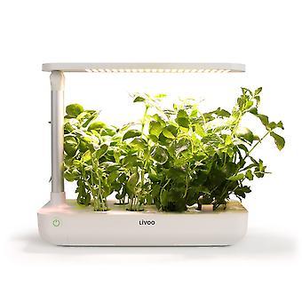Livoo - Innengarten mit LED-21W LH102-Wuchslampe