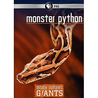 Monster Python [DVD] USA import
