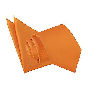 Celosia Orange Solid Check Tie & Pocket Square Set