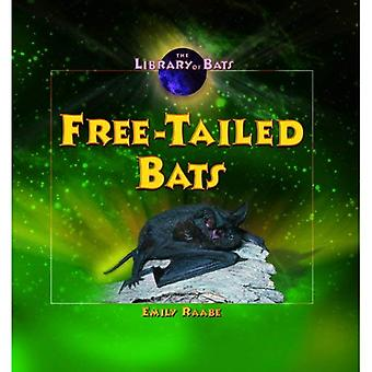Free-Tailed Bats (Library of Bats)
