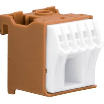 Hager KN06P Terminal block Brown, White 6-pin 63 A 230 V