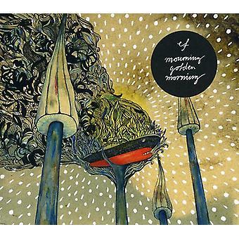 EF - rouw gouden ochtend [CD] USA import