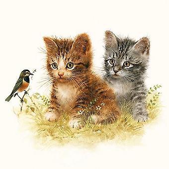 CraftEmotions napkins 5pcs - Kitten friend 33x33cm Ambiente 13310170