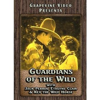 Guardians of the Wild (1928) [DVD] USA import
