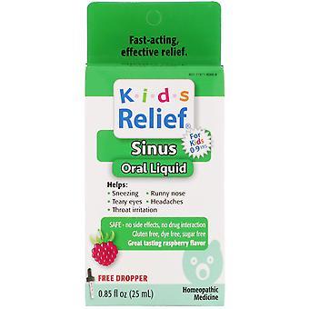 Homeolab USA, Kids Relief, Sinus Oral Liquid, For Kids 0-9 Yrs, Raspberry Flavor