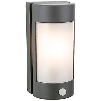 1 luz ligera de la luz de la pared al aire libre, grafito PIR, difusor de policarbonato de ópalo IP44, E27