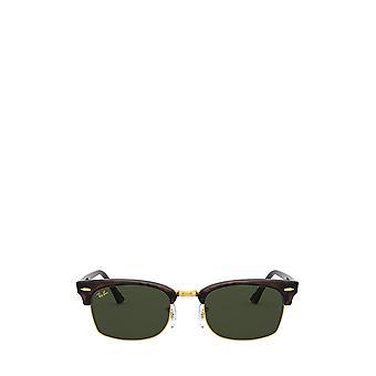 Ray-Ban RB3916 mock tortoise unisex sunglasses