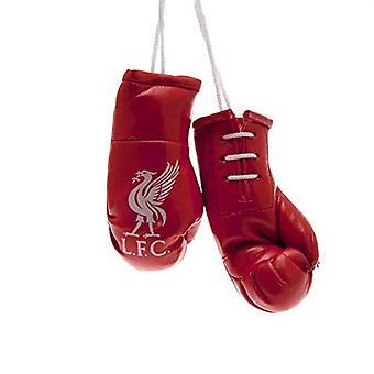 Luvas de mini boxe do Liverpool FC