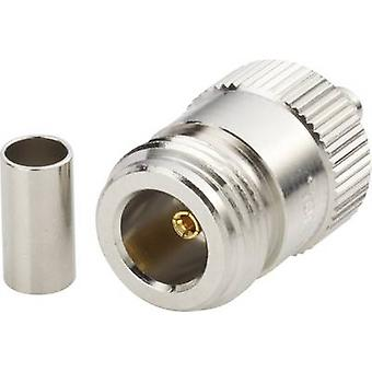 Amphenol N6121A1-NT3G-1-50 N connector Socket, straight 50 Ω 1 pc(s)