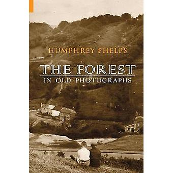 The Forest in Old Photographs by Humphrey Phelps - 9781848683396 Book