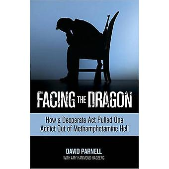 Facing the Dragon - How a Desperate Act Pulled One Addict Out of Metha