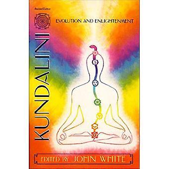 Kundalini, Evolution and Enlightenment (Omega Book)