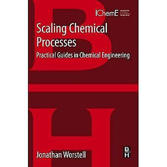 Mise à l'échelle des procédés chimiques: Les Guides pratiques de génie chimique