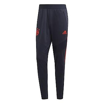 2019-2020 Bayern Munich Adidas EU Training Pants (Legend Ink)
