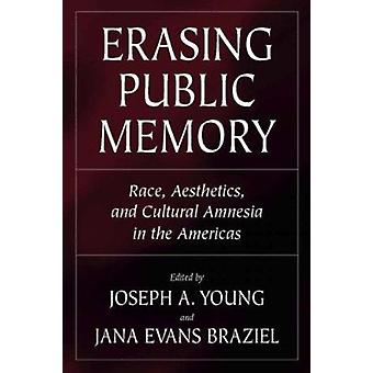 Erasing Public Memory - Race - Aesthetics - and Cultural Amnesia in th