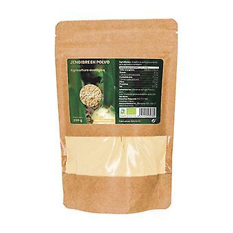 Poudre de gingembre biologique 200 g de poudre