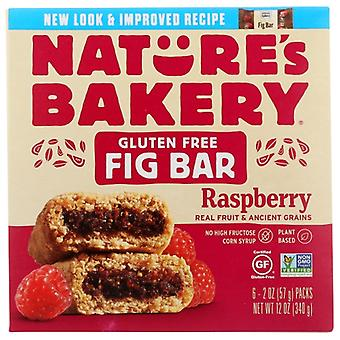 Natures Bakery Bar Fig Gf Raspberry 6Ct, Case of 6 X 12 Oz