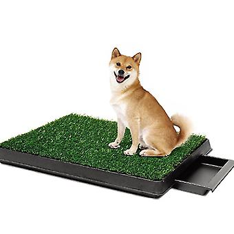 Husdjur Toalett Imitation Gräsmatta Husdjur Toalett