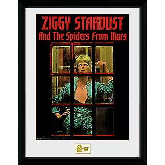 David Bowie Ziggy Stardust Collector Print